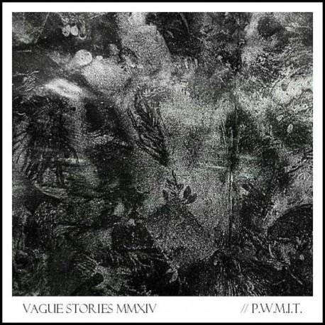 VAGUE STORIES - P.W.M.I.T.