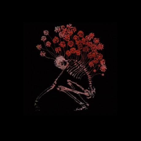 Tenhi – Folk Aesthetic 1996-2006