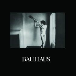 Bauhaus – In The Flat Field ( Vinyl + CD )