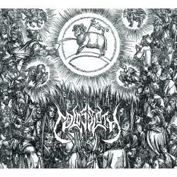 COLOSSLOTH – Heathen Needles