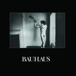 Bauhaus ‎– In The Flat Field ( Vinyl + CD )