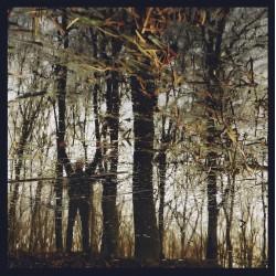 Apoptose – Bannwald (Vinyl,...
