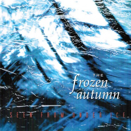 The Frozen Autumn – Seen From Under Ice