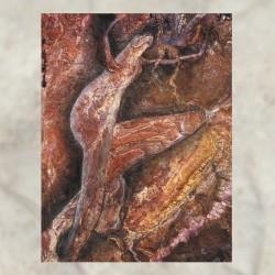 Coil - Swanyard (3 × Vinyl...