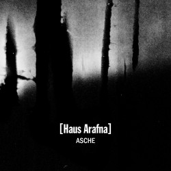 Haus Arafna – Asche